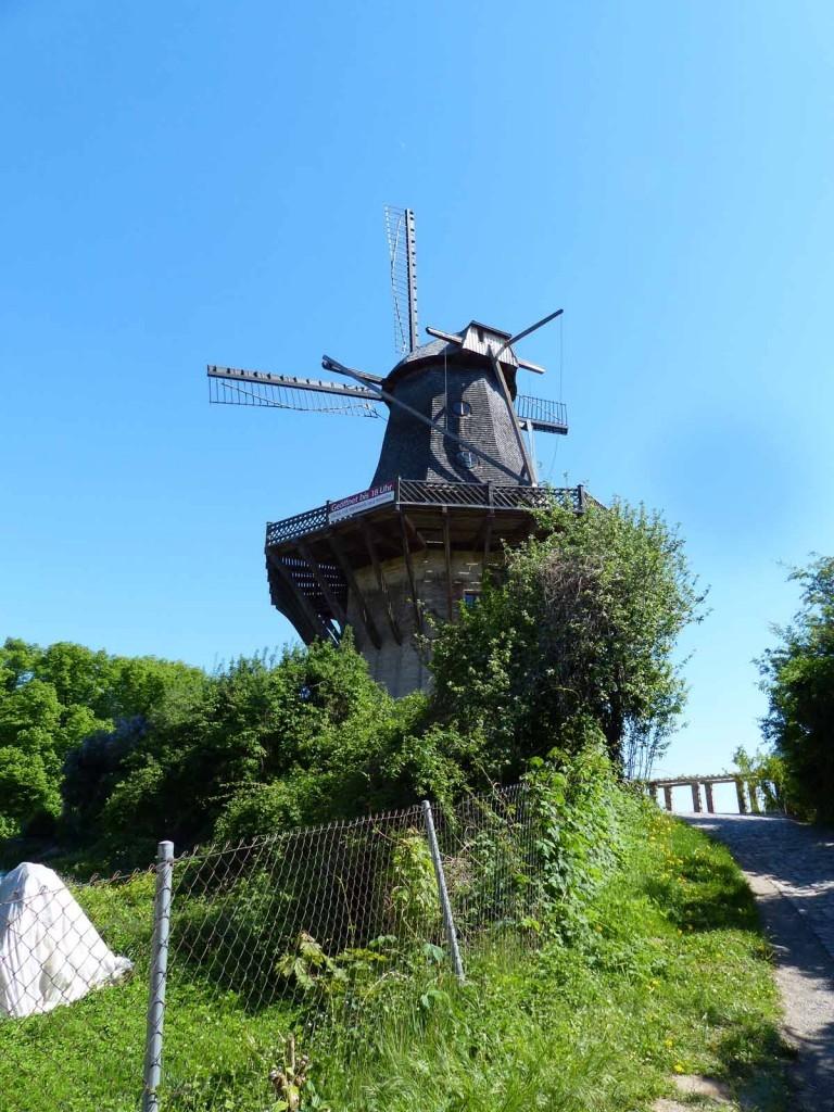 Historische Mühle von Sanssouci, Foto: D.Weirauch