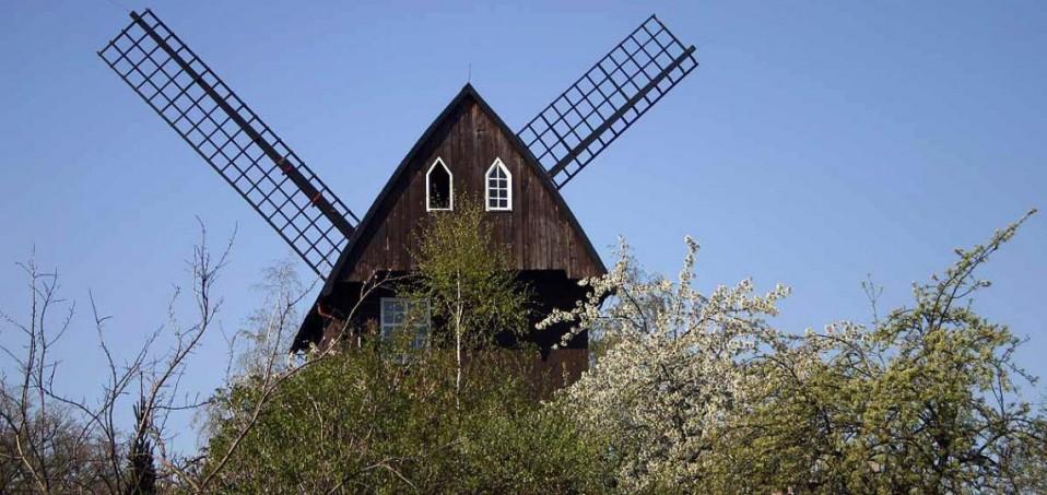 Die Mühle in Paretz hat zum Mühlentag geöffnet Foto: Weirauch