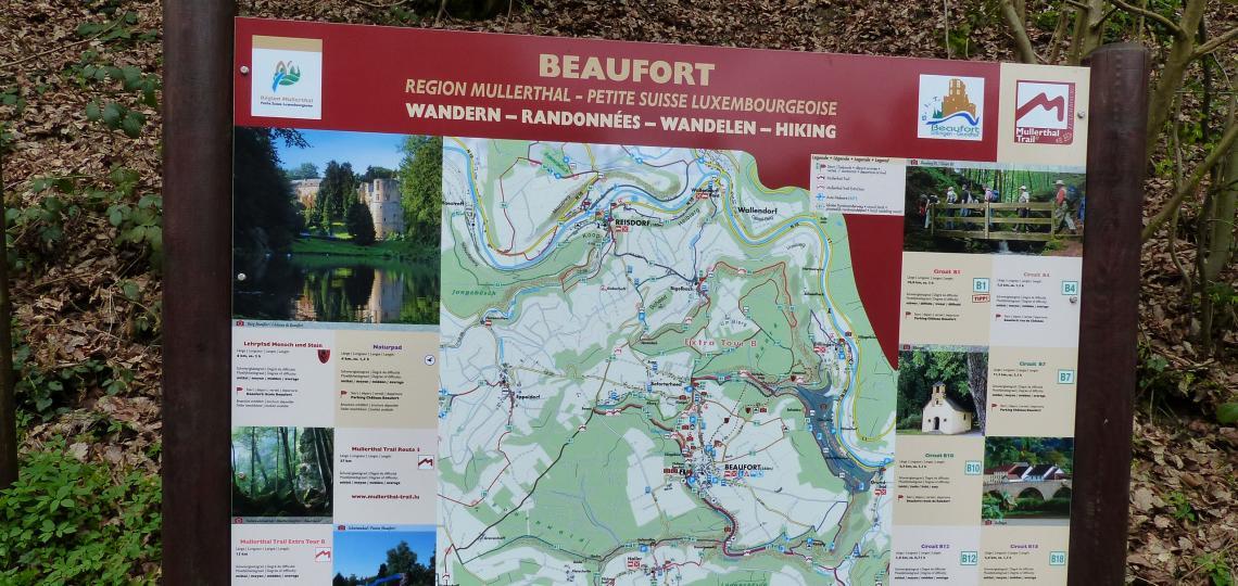 Ein Wanderparadies: Region Mullerthal in Luxemburg