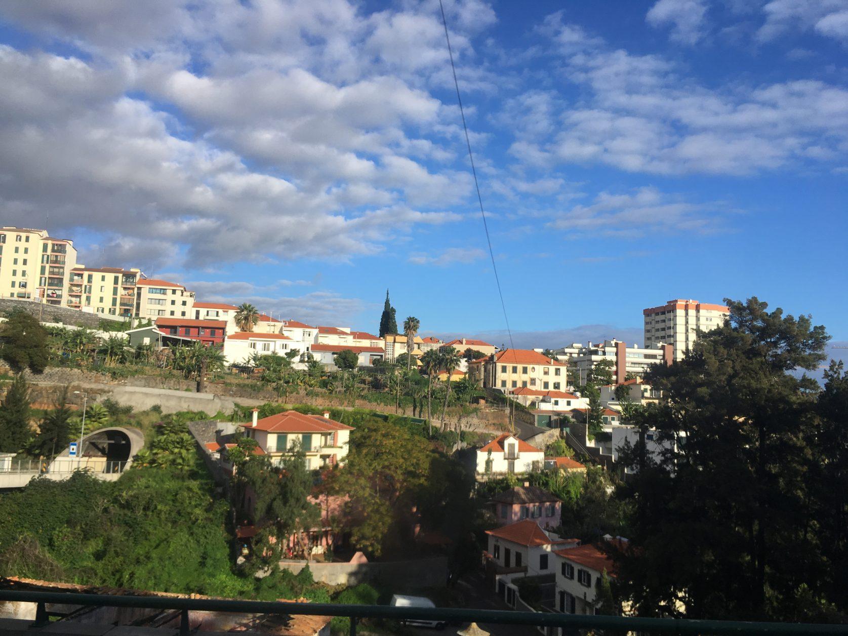 Madeira Ende Januar 2017, Foto: D. Weirauch