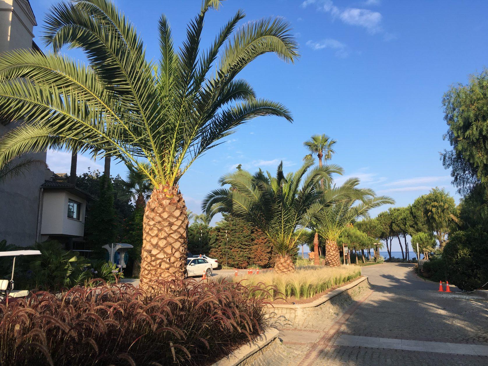 Schöner kann der Weg vom Hotel zum Strand nicht sein