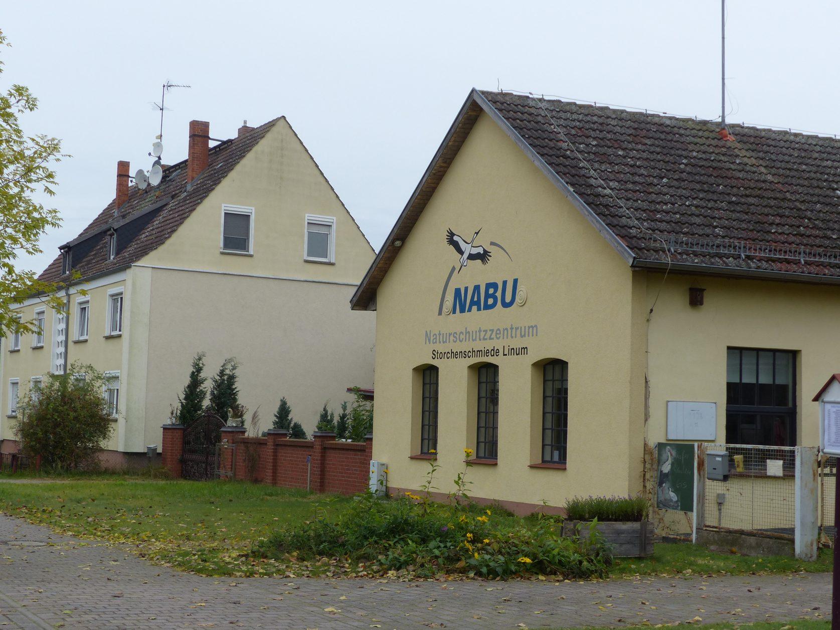 Kranichzug: mit NABU das Naturschauspiel vor den Toren Berlins erleben