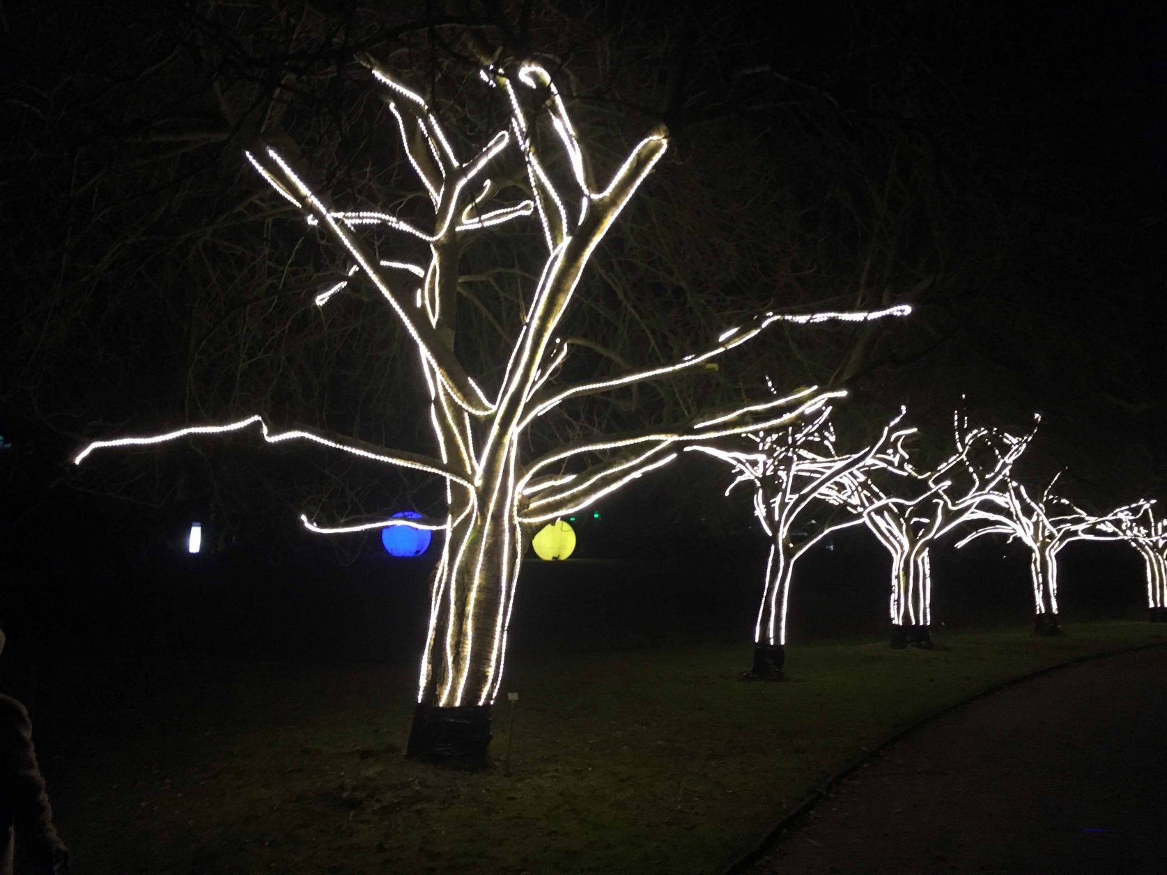 Christmas Garden Botanischer Garten flongaub