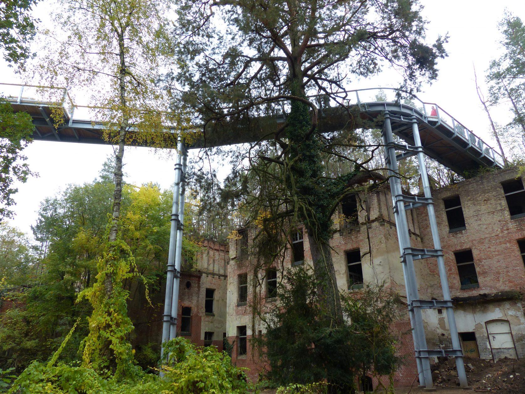 Hoch über den Heilstätten in Beelitz laufen, Foto: Dieter Weirauch