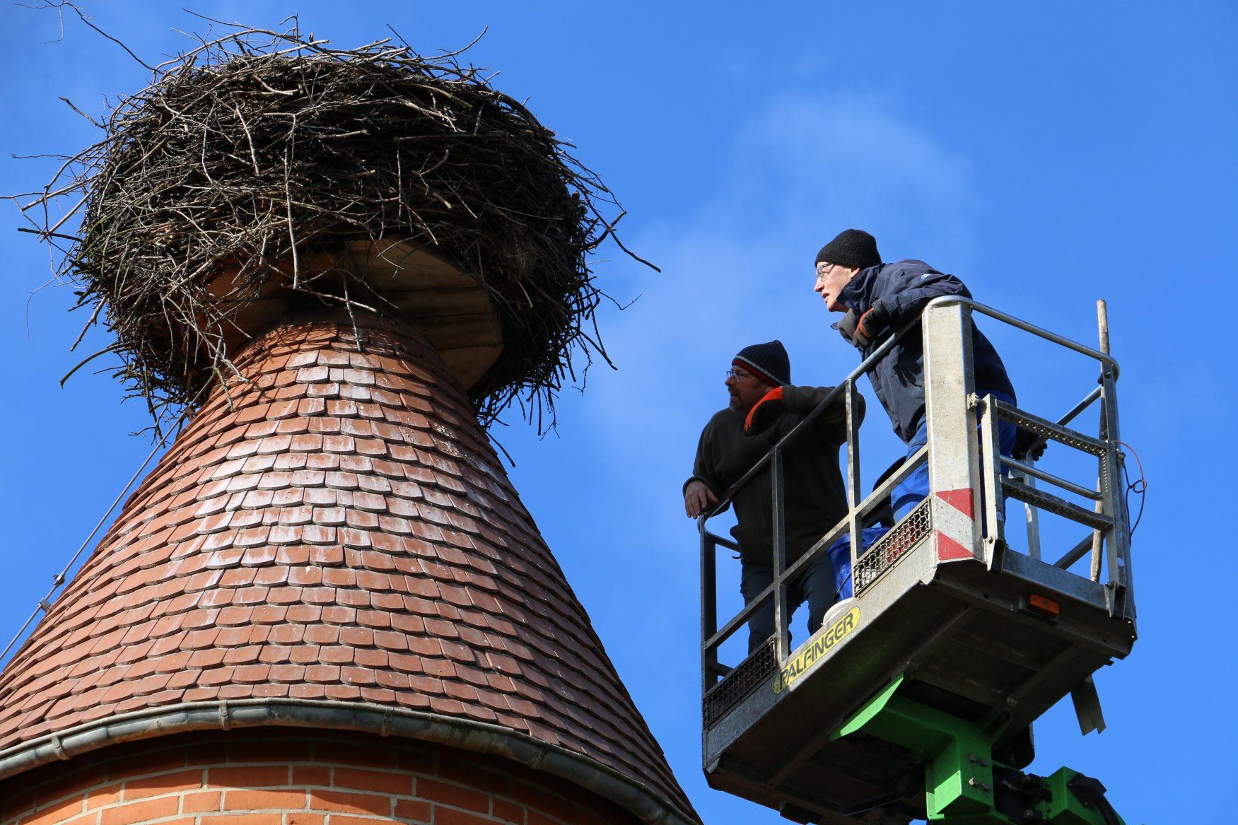 Rund 40 Brutstätten stehen den Störchen in Deutschlands storchenreichstem Dorf Rühstädt zur Verfügung. Die Nester wurden jetzt kontrolliert und für die neue Storchensaison fit gemacht. Bildquelle:J.Schormann/LfU.