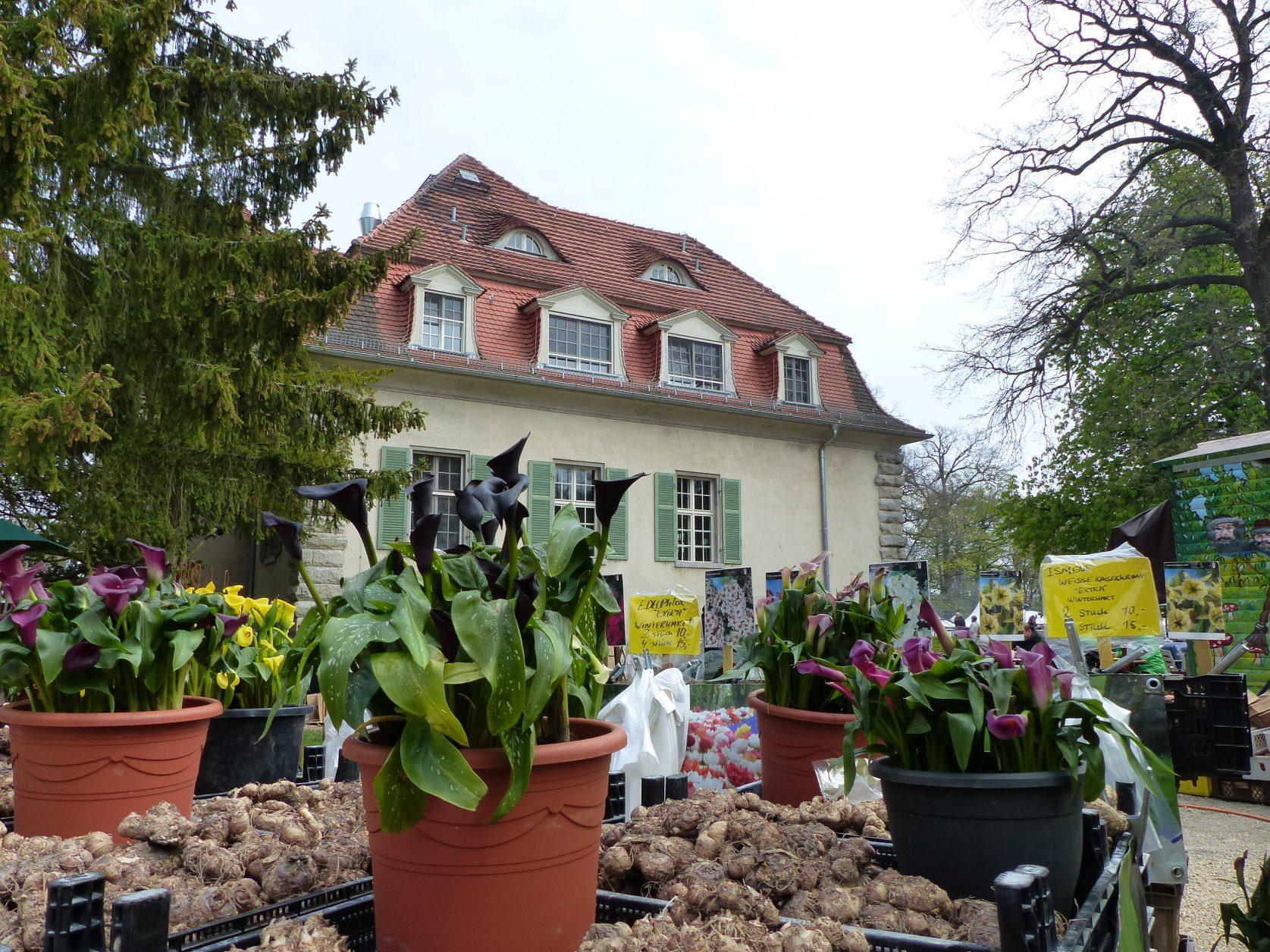 Schlosspark Kartzow im April: LebensArt