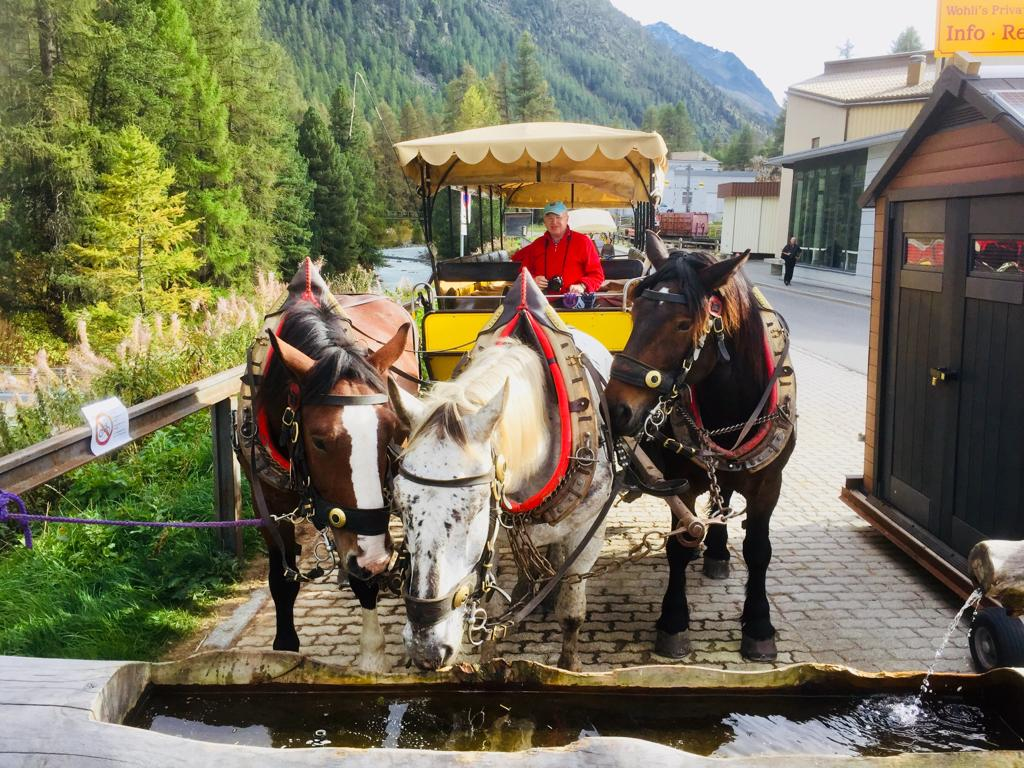 Mit 3 PS geht es in das Val de Roseg von Pontresina, Foto: Weirauch