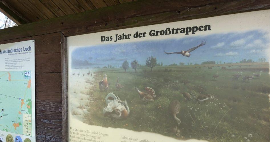 Grosstrappen