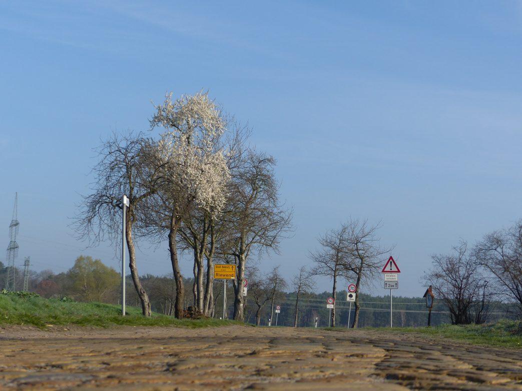 Storchenrwadweg Bagow Päwesin