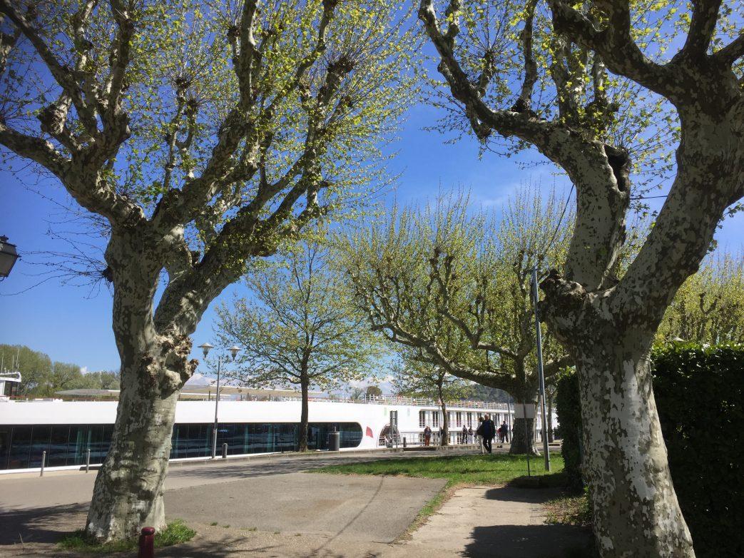 Die A-Rosa Luna liegt im Hafen von Viviers