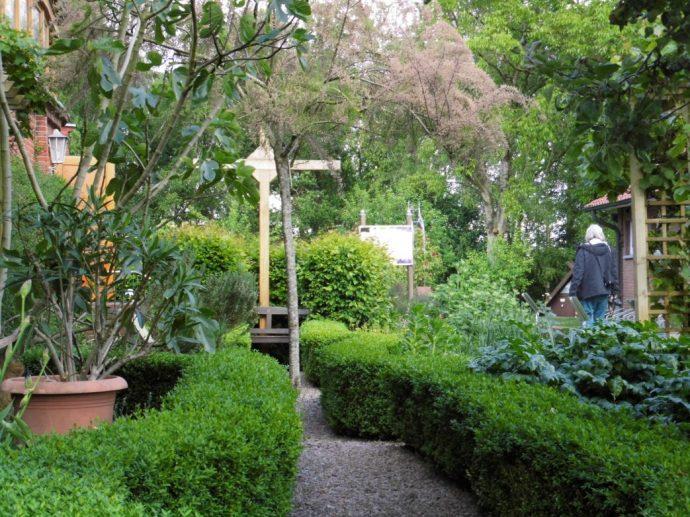 Im Bibelgarten Foto: G. Knackfuss