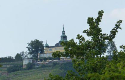 Radebeul Dresden (36)