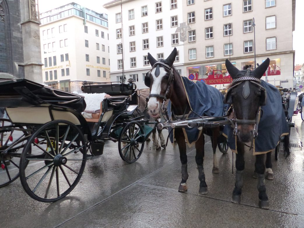 Wien Nickotours