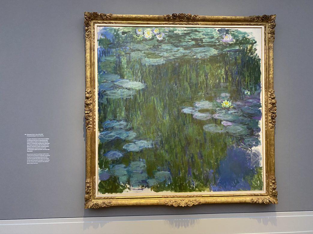 Die berühmten Seerosen von Monet, Foto: Weirauch