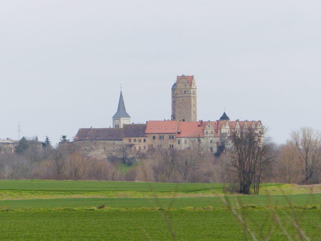 In der Ferne grüßt Schloss Plötzkau Foto: Weirauch