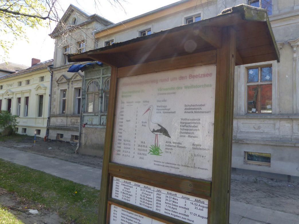 Störche Beetzsee Roskow Storchenrwadweg