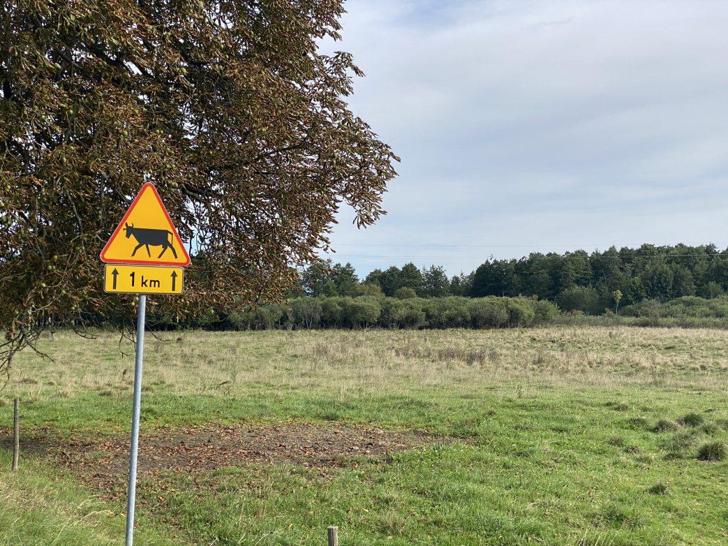 Masuren Polen Fahrrad Radfahren